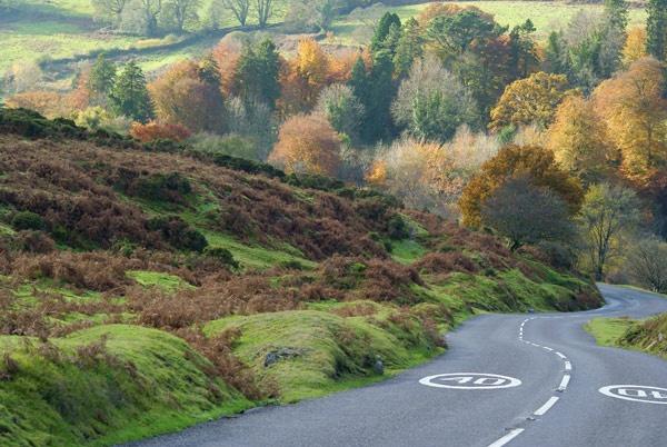 Dartmoor in November by ambro
