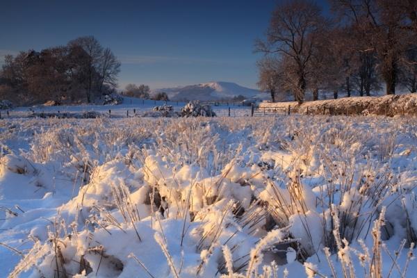 Slieve Gallion View by chenderson