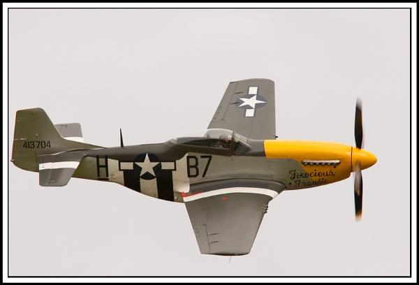 Mustang  P-51 by Mrd06