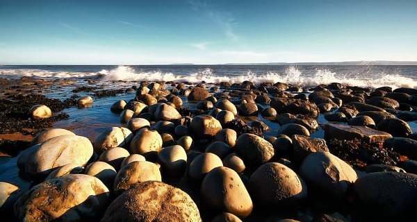 ROCKS & SEAWEED by Imagephotographics