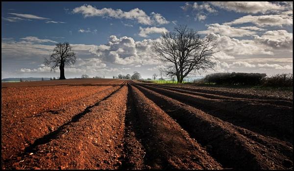\'Tis the Plowin\' Season. by Niknut