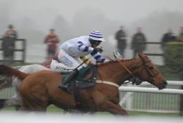 Cheltenham 2011