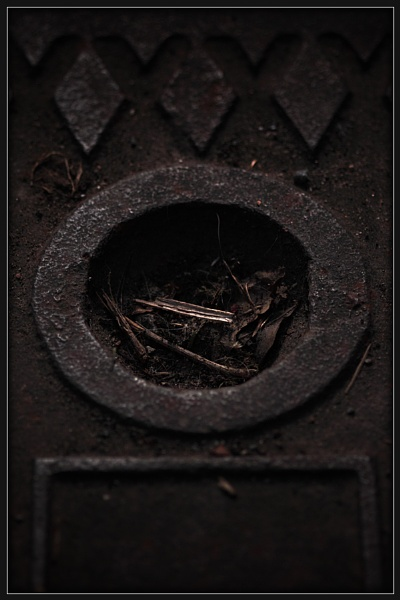 Drain Cover by Morpyre