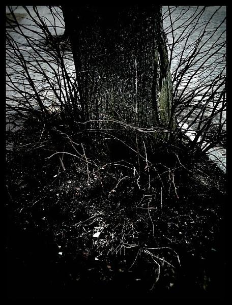 DarkStar2 - BuryMeNow by nellabella