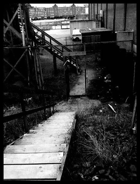 DarkStar4 - BuryMeNow by nellabella