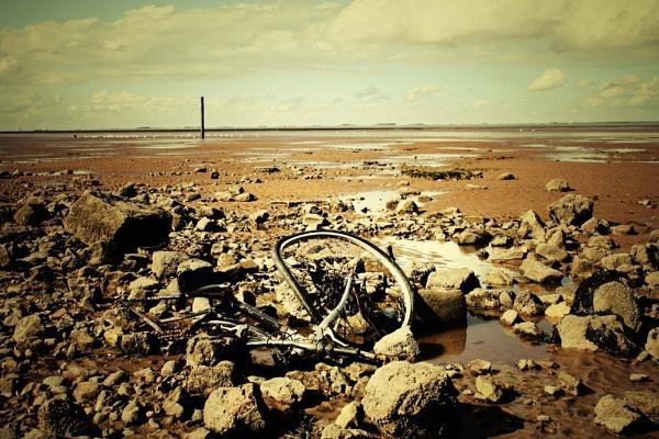 Low Tide by Lexxy