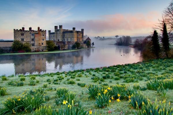 Spring Dawn by gvet