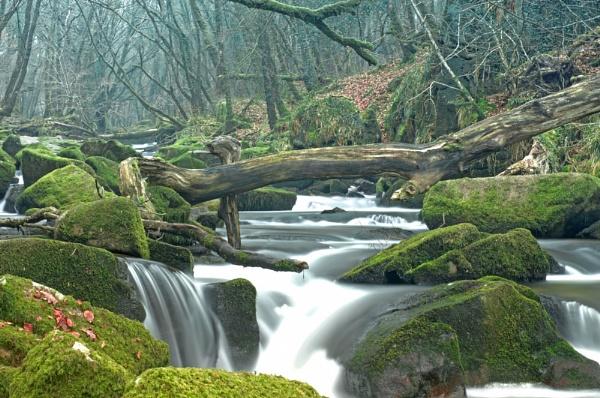 Golitha Rapids by Slapster