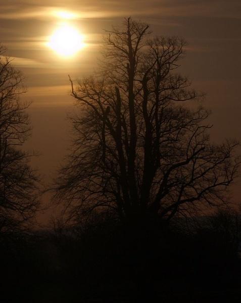 Saturday\'s Moon by crookymonsta