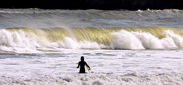 Surf by jonathanbp