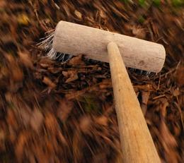 A new broom