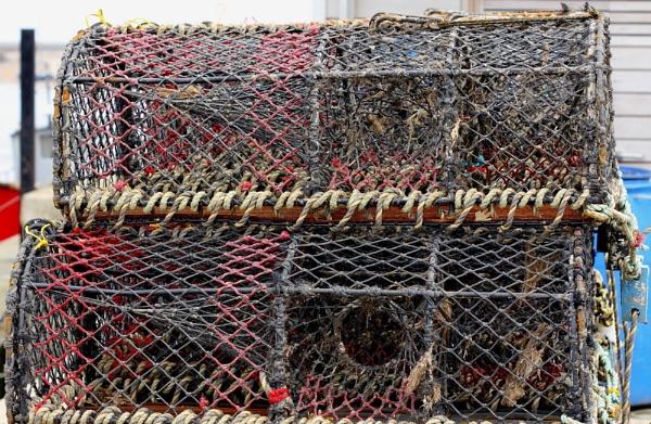 Crab pots by pdcche