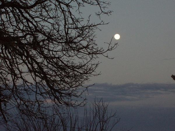 Moonrise by Vego1237