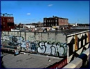 The Bronx decorated by starik39