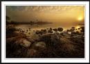Dawn in the Everglades