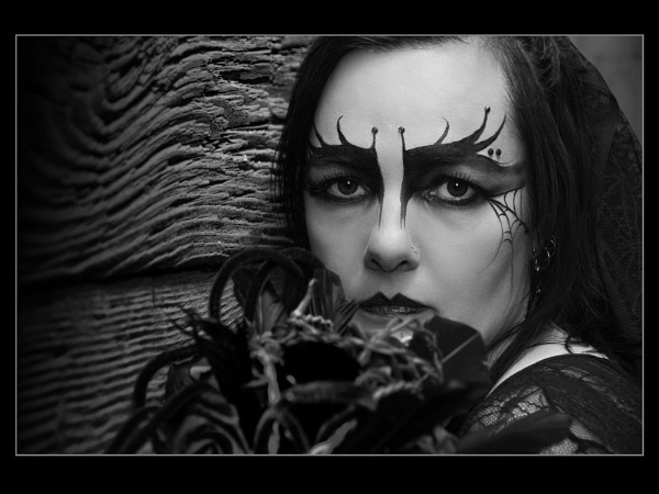 Gothic by Plumit