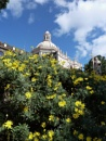 spring in a religious sicily