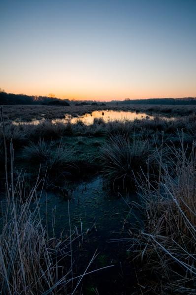 Sunrise at Lopham Fen by StuartAt
