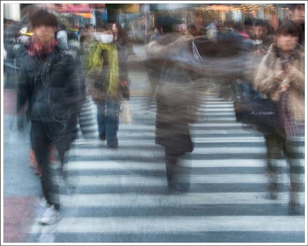 Shibuya Crossing by rontear