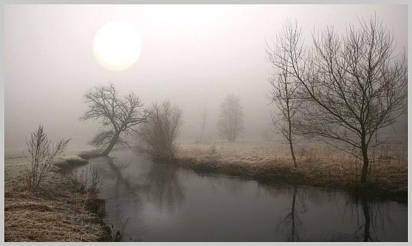 Misty by DavidTravis