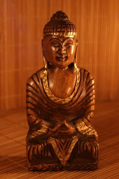 Carved Wooden budda by bigwulliemc