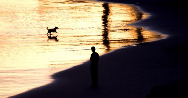 Dog and Man by jonathanbp
