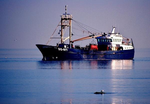 "\""Ship To Shore\"" by diamondgeaser"