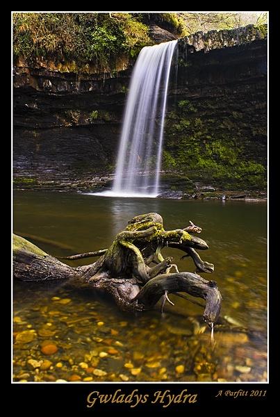 gwladys falls hydra by zapar40