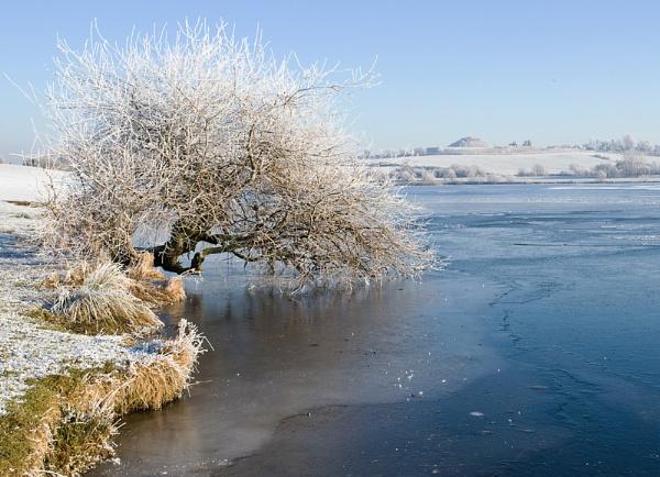 Frozen by Philo