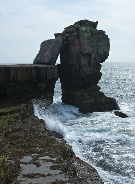 The Rock by suekib