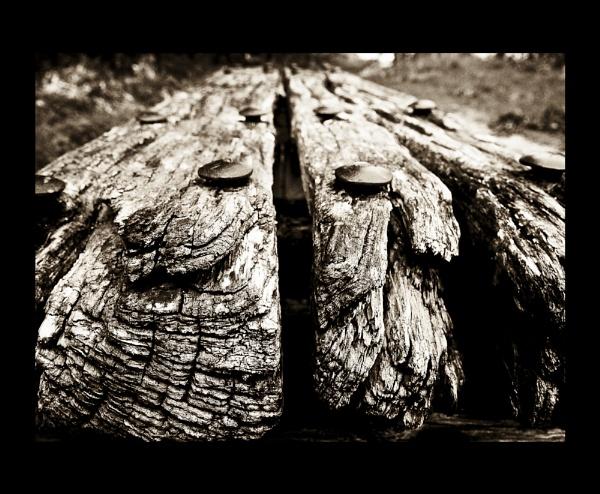 Wood by niallkeay1969