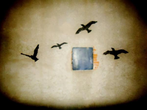 Birds. by HollySercombe
