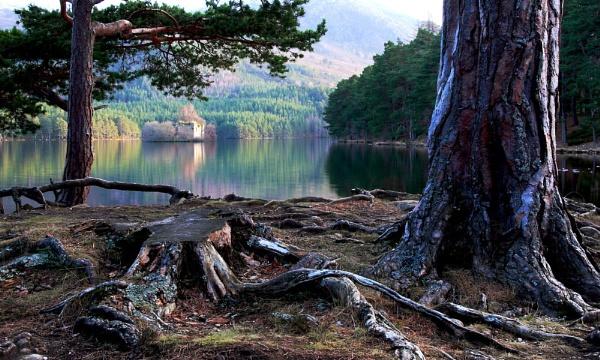 Loch An Eilein by fraser