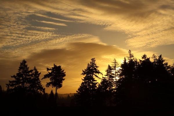 Sunrise in Portland, Oregon by paulvo