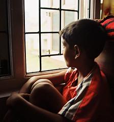 Contemplation or Wonder?