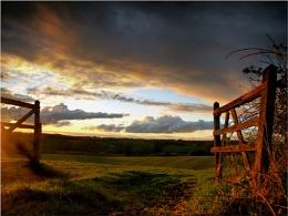 Sunny Gate