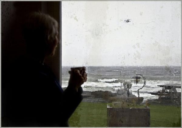 Looking Outside by Daisymaye