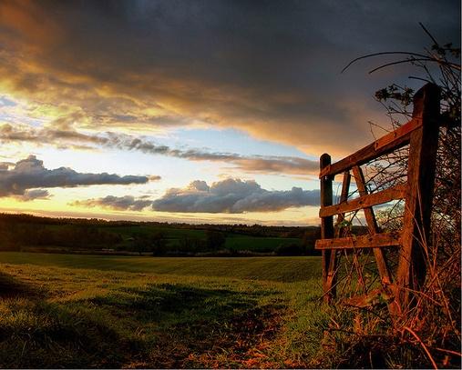 Sunny Gate by ringyneck