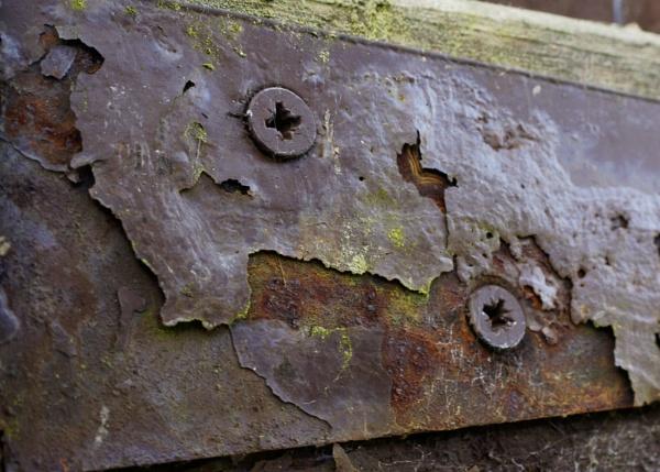 Rusty Hinge by shellshock