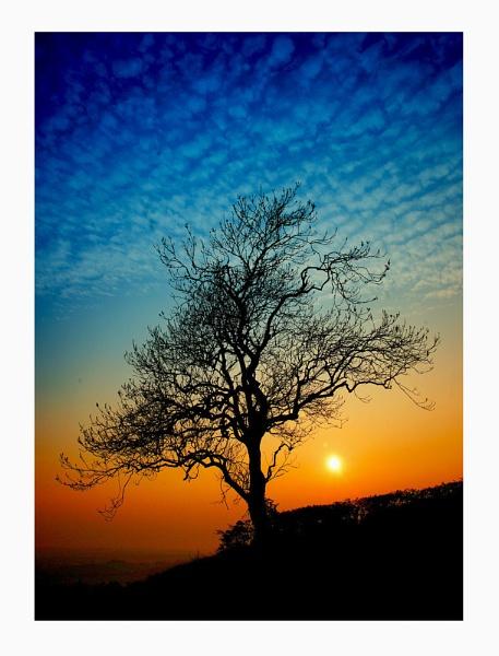 Sunset by KENZIEBOY