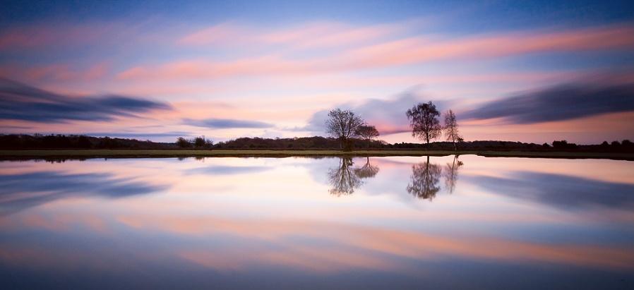 Fritham Pond