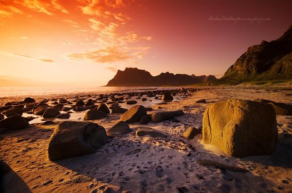 Midnight Sun by A_Stridsberg