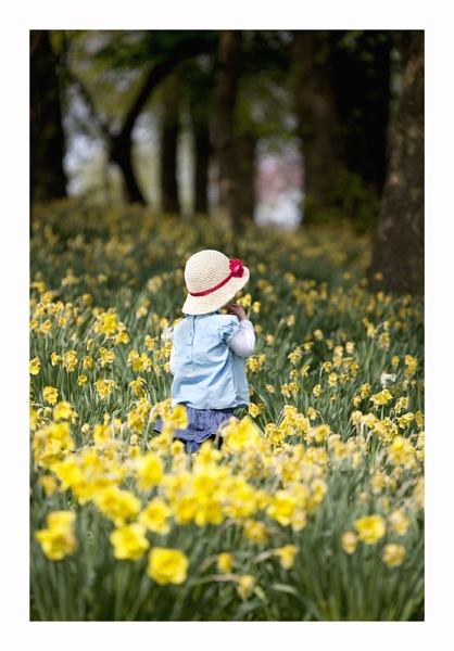 Girl in the daffodils by brianquinn