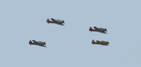 Flying in Formation by redpuma