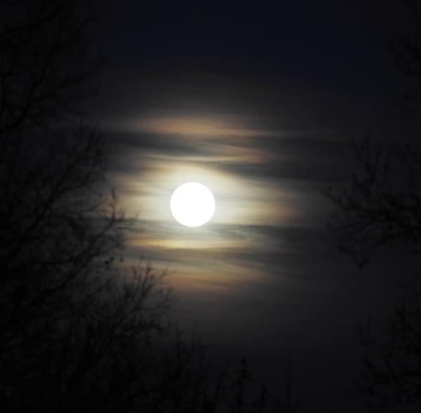 full moon by trevmsklly