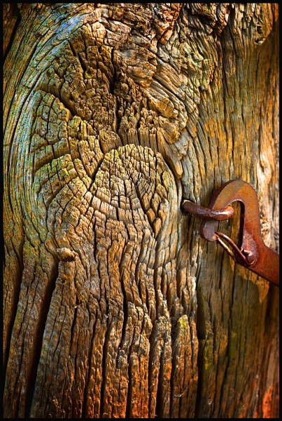 Gatepost & Latch. by Niknut
