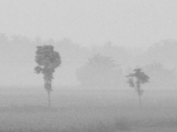Morning mist by ARGHYASIKDAR