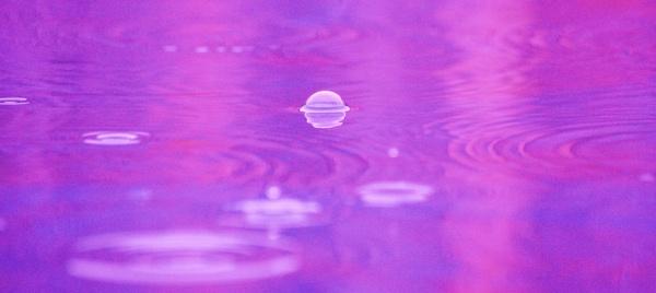 Rain Drops by JustDucky