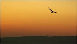 Sunset Over Derbyshire