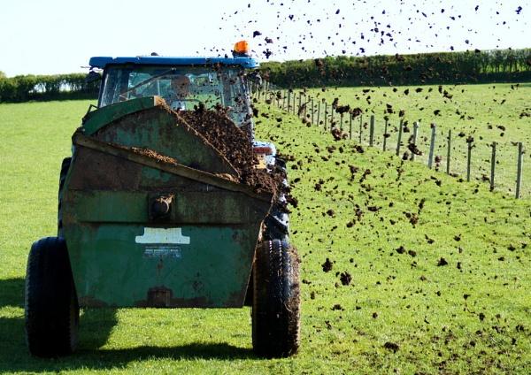 Farm Fresh? by IFIMAGE